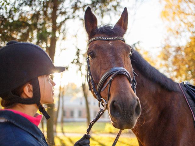 Portrait d'un ado et son cheval en colonie de vacances