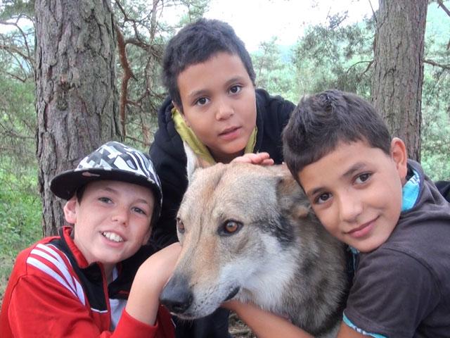 Trois préadolescents et leur chien de randonnée en colonie de vacances