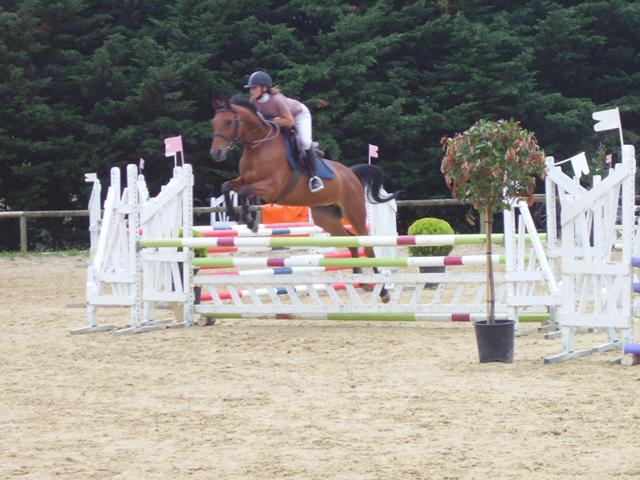 Adolescente et son cheval faisant du saut de haie en colo