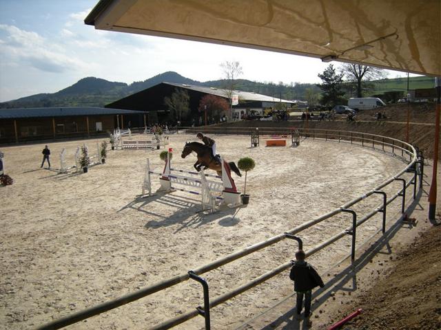 Enfants faisant de l'équitation en colonie de vacances