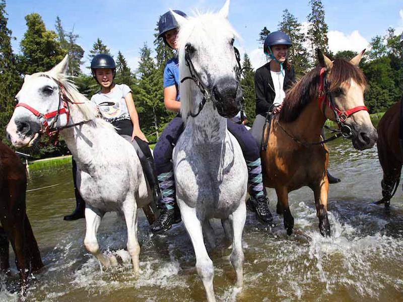 Enfants en rando à cheval dans une rivière