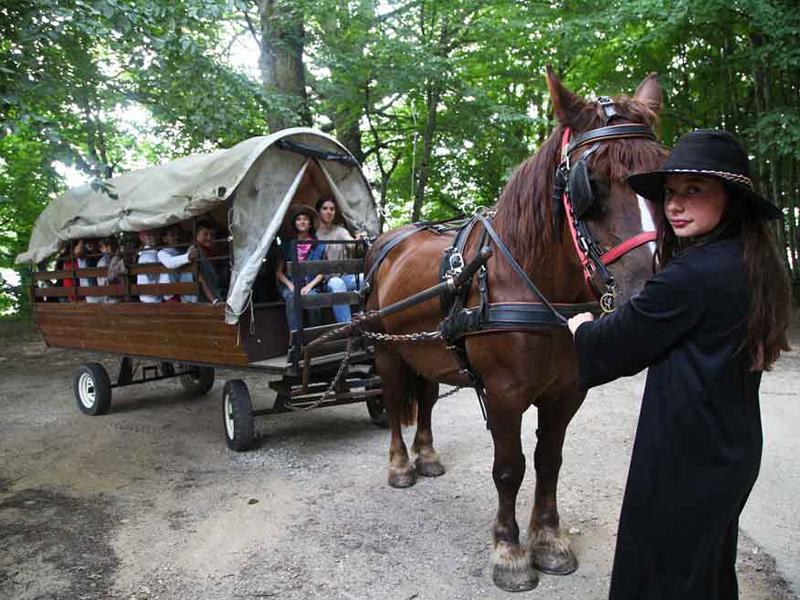 Enfants dans une carriole en colonie de vacances au far west