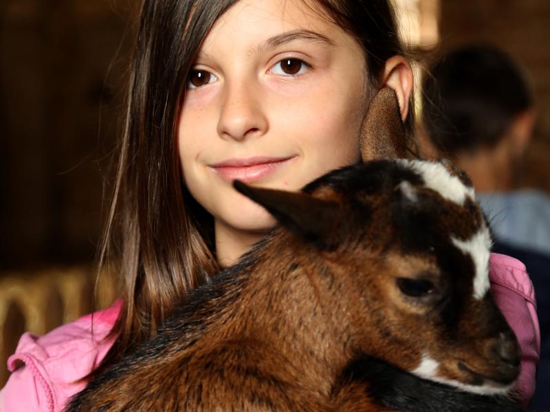 Portrait d'une jeune fille avec un chevreau dans les bras en colo à la ferme