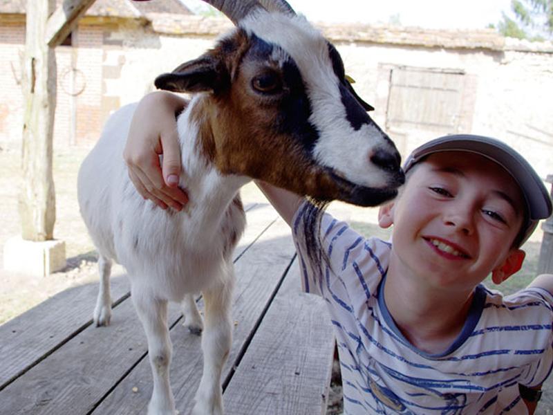 Portrait d'un jeune garçon avec une chèvre en colonie de vacances à la ferme cet été