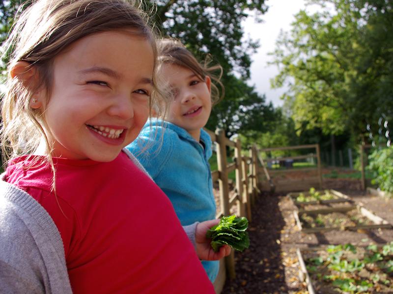 Portrait de fillettes faisant le potager en colonie de vacances à la ferme