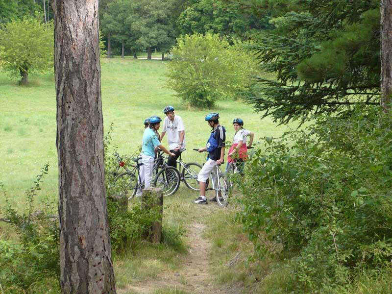 Les jeunes de la colonie faisant du VTT dans les bois