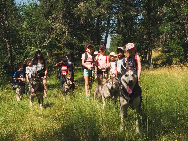 groupe d'ados et enfants en cani randonnée en colo cet été