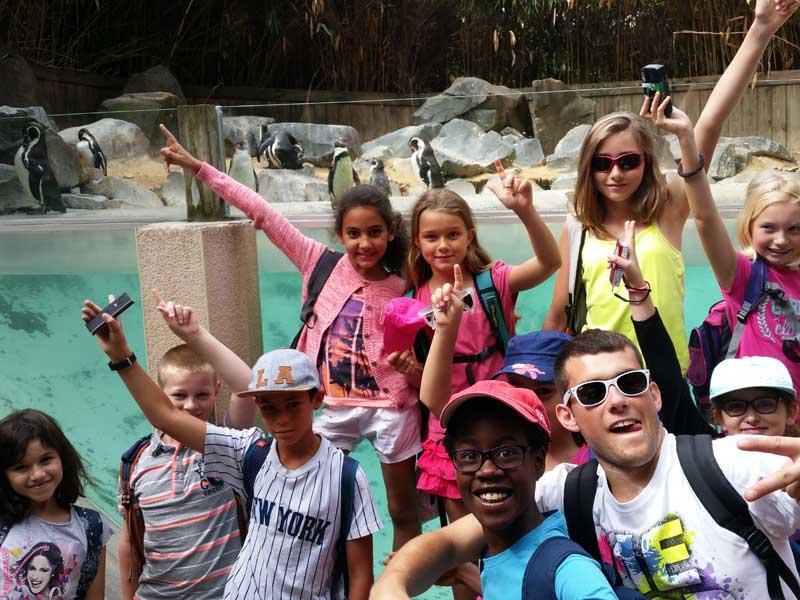 enfants en colonie au zoo de la flèche