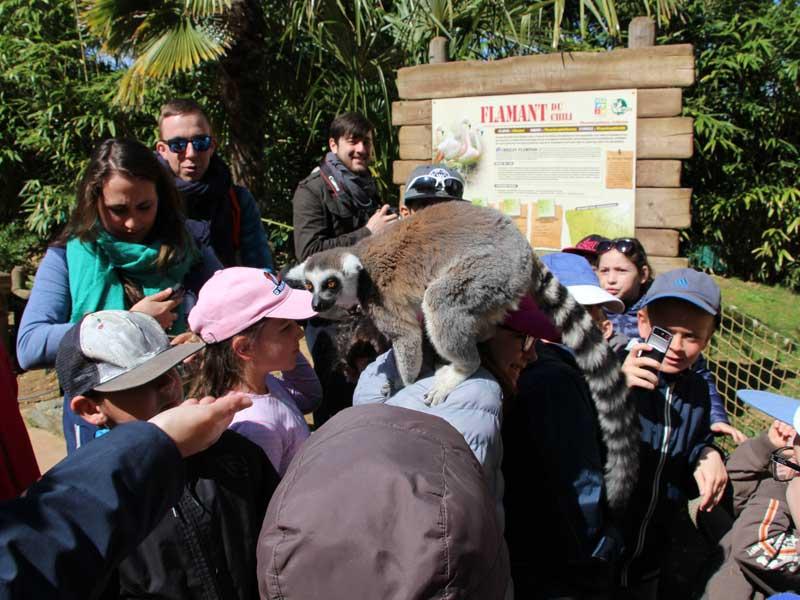 Guide de colo qui explique aux enfants le zoo