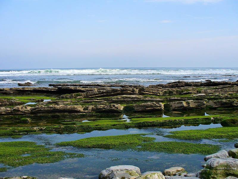 Une plage des Pays Basques en été