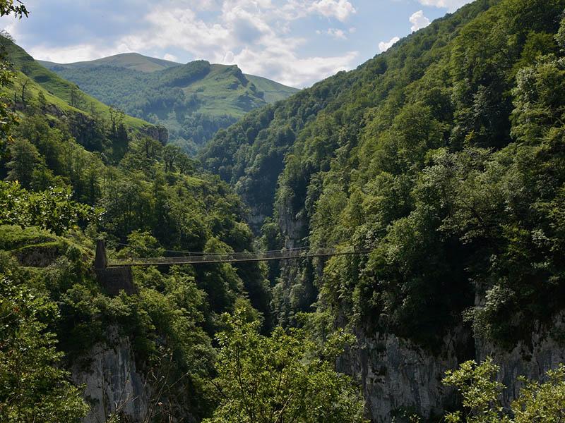 Les gorges d'Holzarte et sa passerelle, au Pays Basque, en été