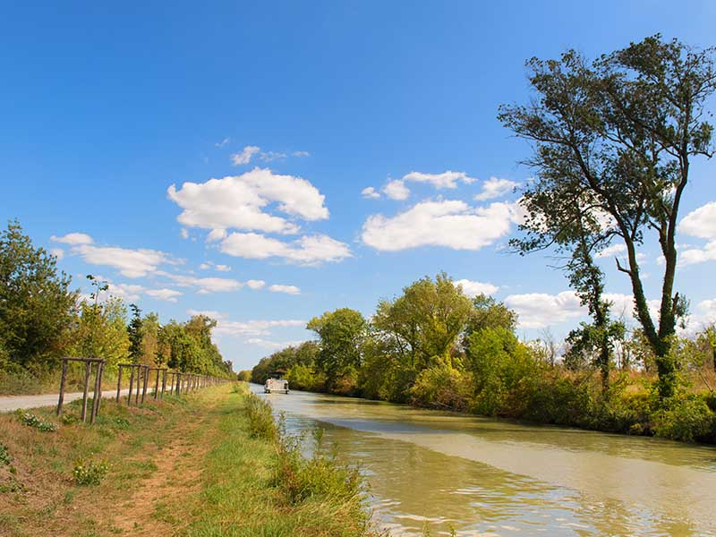 Le canal du Midi en été