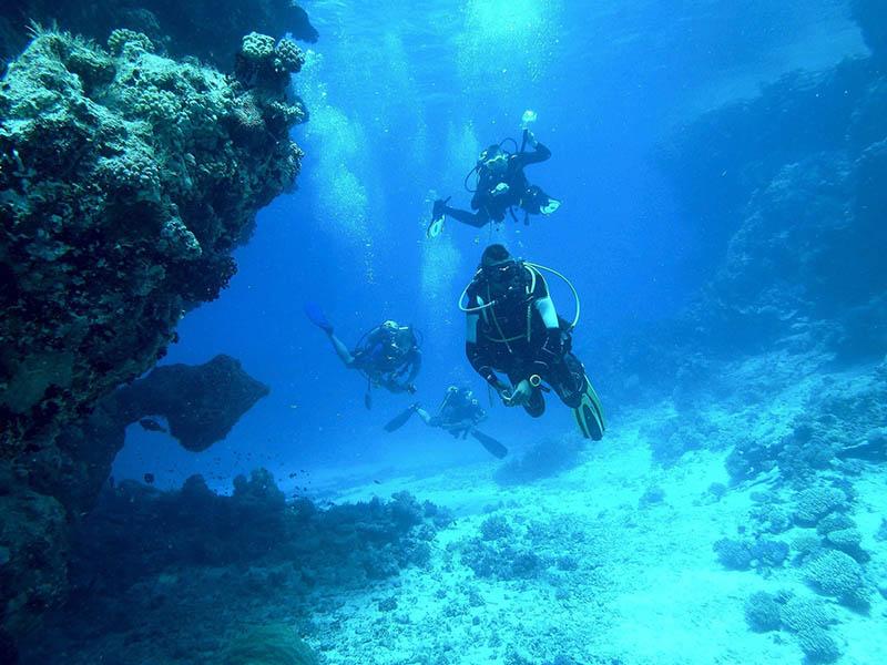 Un groupe d'ado en colonie de vacances en activité plongée sous-marine en été en Bretagne
