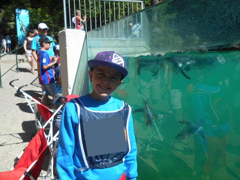 Enfant visitant le zooparc de beauval en colo cet été