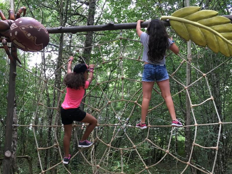 Enfants faisant de l'accrobranche en colonie de vacances cet été