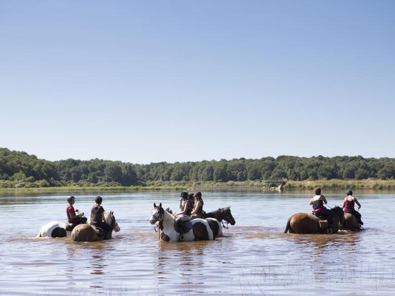 adolescents en randonnée à cheval dans le lac en colo