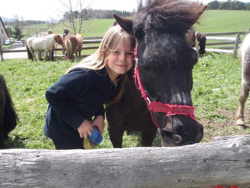 Enfant qui caresse un cheval en colonie de vacances