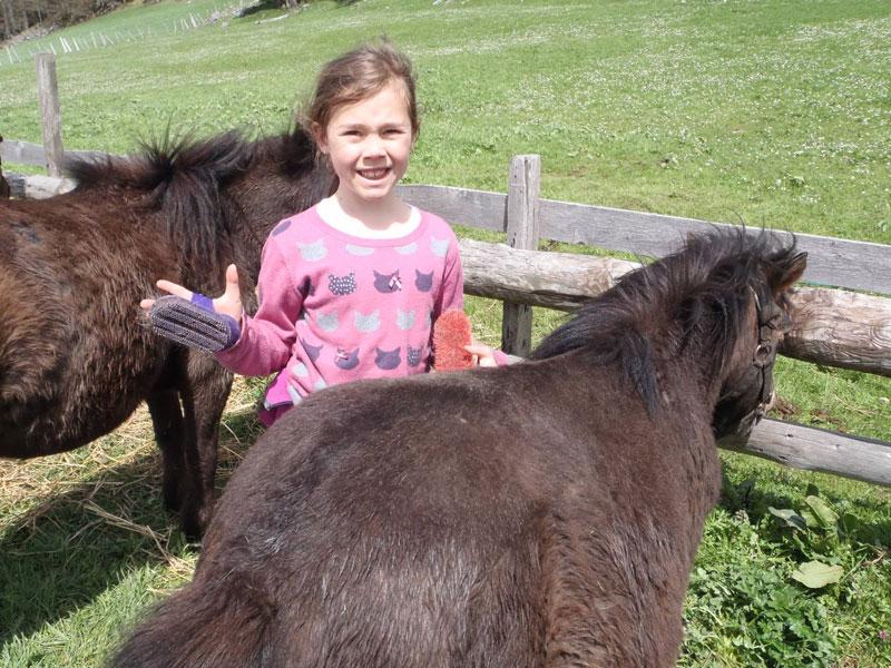 Enfant qui brosse un cheval