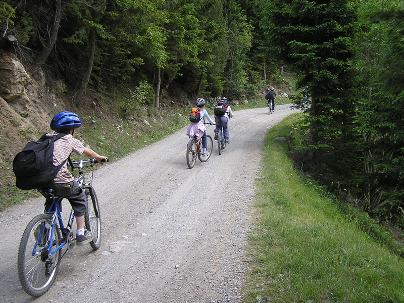 Groupe d'enfants en balade à vélo