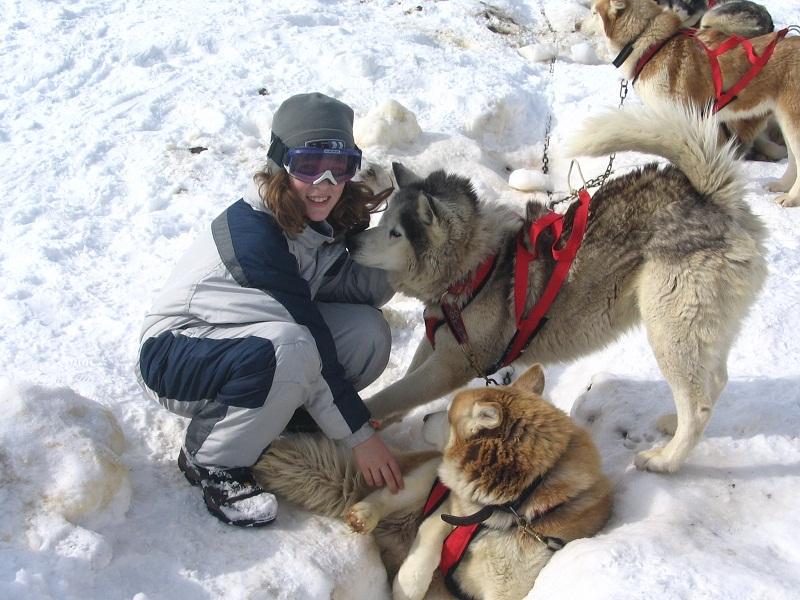 Enfant jouant avec des husky dans la neige