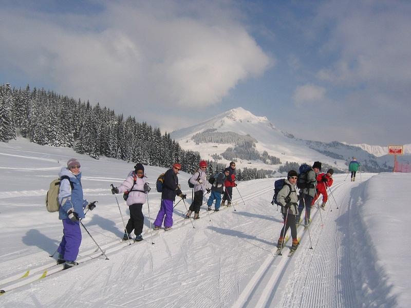 Adolescents faisant du ski de fond à la montagne en colo
