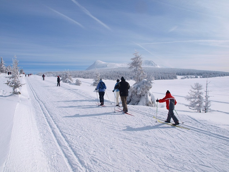 Enfants apprenant le ski de fond en colo