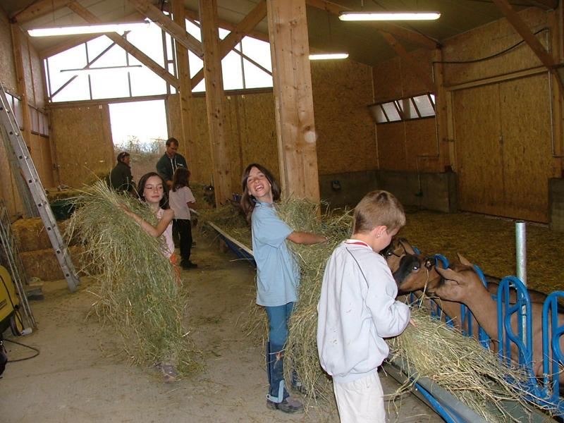 Enfants découvrant le travail à la ferme