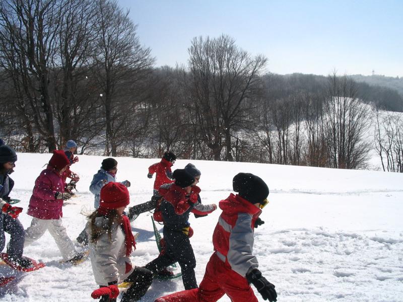 Groupe d'enfants courant dans le neige avec des raquettes en colo