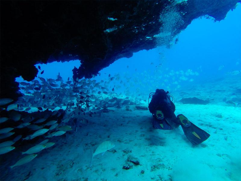 Plongée sous marine en colonie de vacances aux canaries