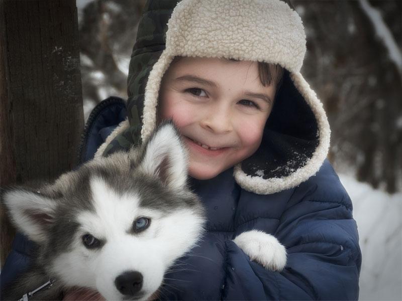 Enfant avec un chien de traineaux en colonie de vacances