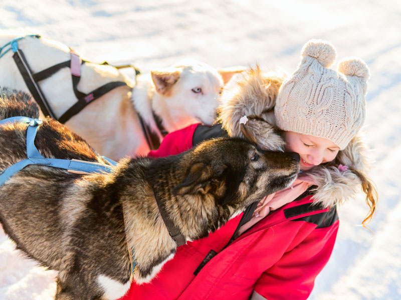 Petites fille avec des chiens de traîneaux
