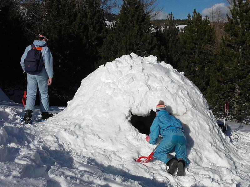 Enfants construisant un igloo en colonie cet hiver