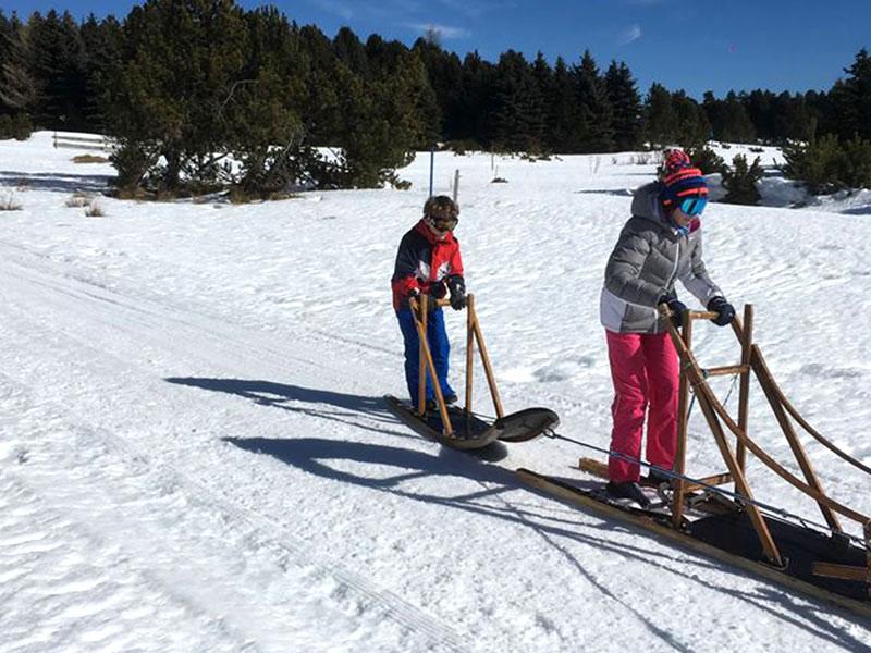 Deux enfants sur un traineau en colo cet hiver