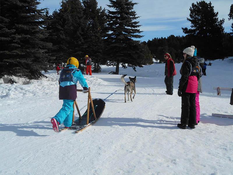Enfants en colonie de vacances en balade en chien de traineau cet hiver