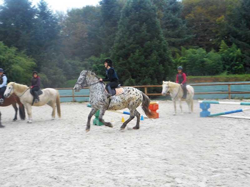 Enfants apprenant la reprise à cheval