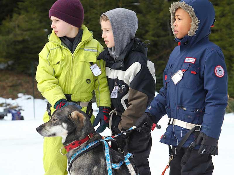 Trois garçons avec leur chien de traineau en colonie de vacances cet hiver