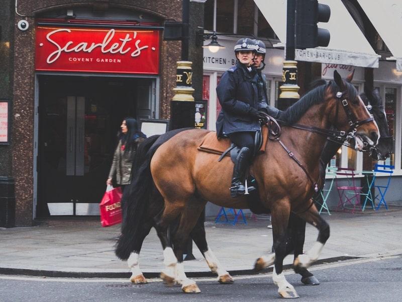 Vue sur des gardes londoniens à cheval lors d'une colonie de vacances
