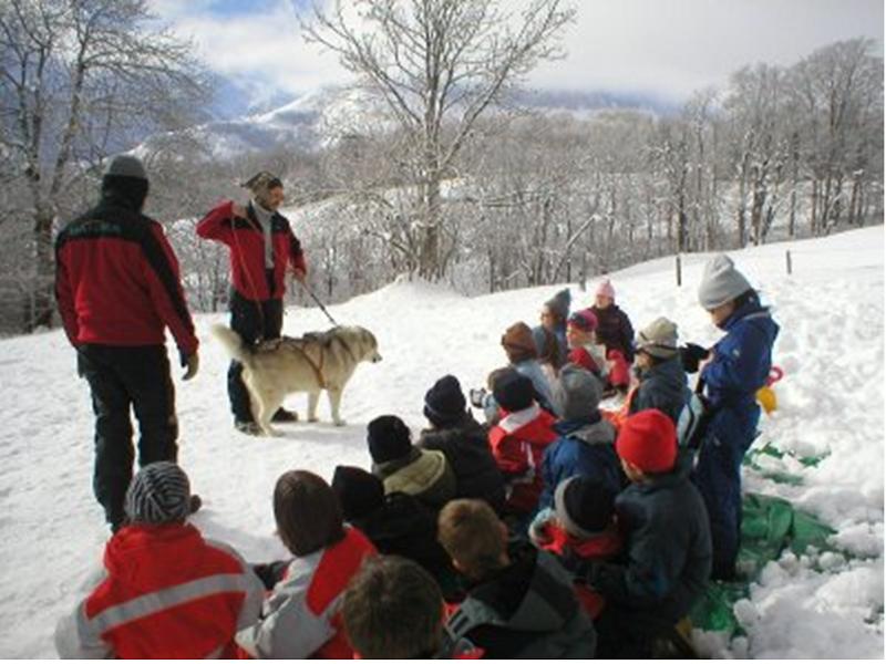 Enfants en colonie de vacances apprenant comment s'occuper des chiens de traîneaux