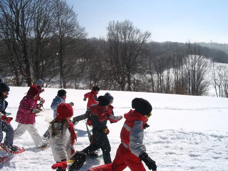 Groupe d'enfants en randonnée raquettes dans la neige