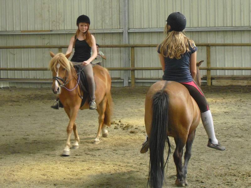 Deux jeunes filles montant à cheval en manège