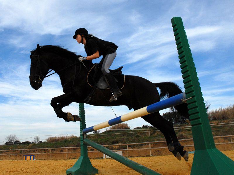 Adolescent faisant du saut d'obstacle à cheval en colonie de vacances