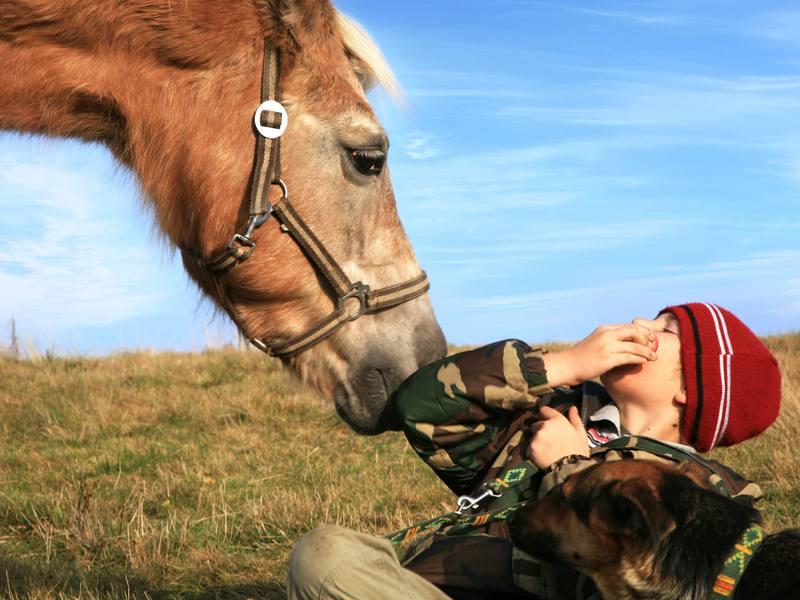Portrait d'un jeune avec son cheval