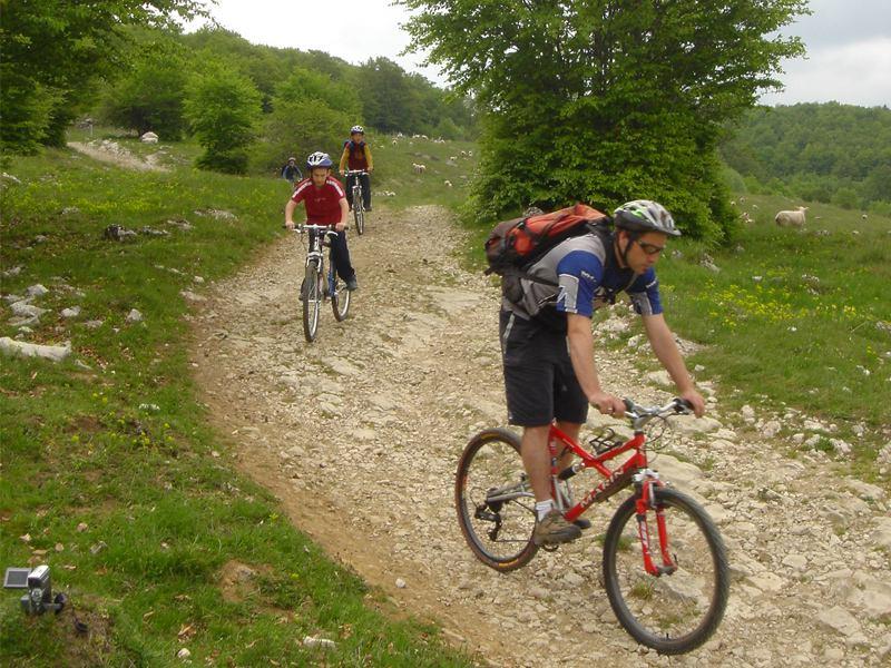 Ados en randonnée à vélo en colonie de vacances