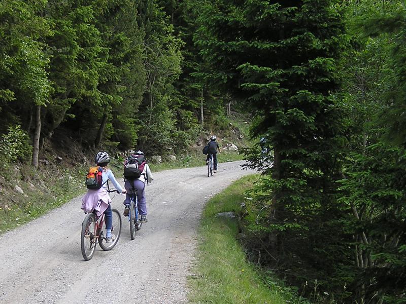 Enfants en randonnée à vélo en colo