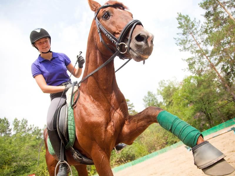 Adolescente à cheval en colo équitation