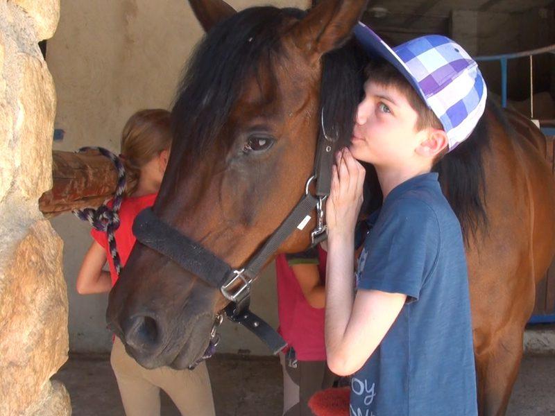 portrait d'un enfant avec son cheval en colonie de vacances