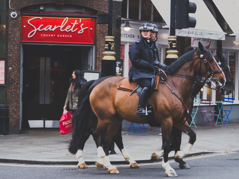 Police anglaise à cheval à Londres