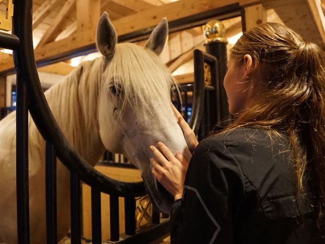 Jeune fille prenant soin de son cheval en colo