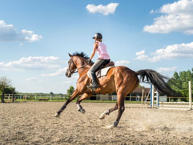 Ados se perfectionnant à l'équitation en colo
