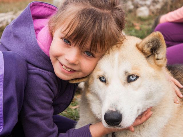 Portrait d'une fillette avec un chien de cani rando en colonie de vacances